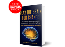 Play-The-Brain-Change-Book